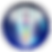sound healers assoc logo.png