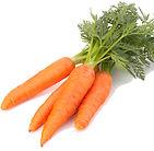seminte morcovi