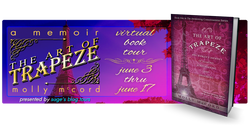 trapeze banner2.png