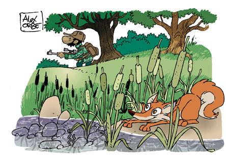 más sabe el zorro...
