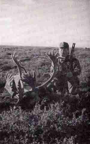 Ray Fredin - Velvet Central Canada Barren Ground Caribou 369 7/8 (1995)