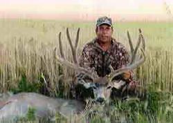 Bruce Louma - Typical Velvet Mule Deer 201 2/8 (2013)