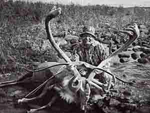 Daryl Kuntz Barren Ground Caribou 403 2/8 (1989)