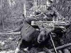 Bob Codling - Alaska Yukon Moose 194 1/8 (2005)