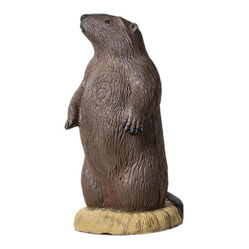 TARGET RINEHART Groundhog