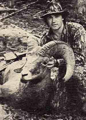 Dale Tingley - Bighorn Sheep 170 6/8 (1989)