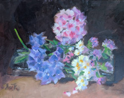 Phlox and Flowers