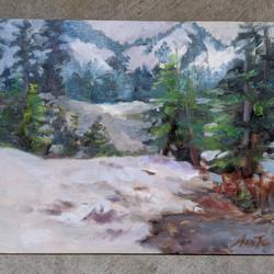 Mt.Rainier In July