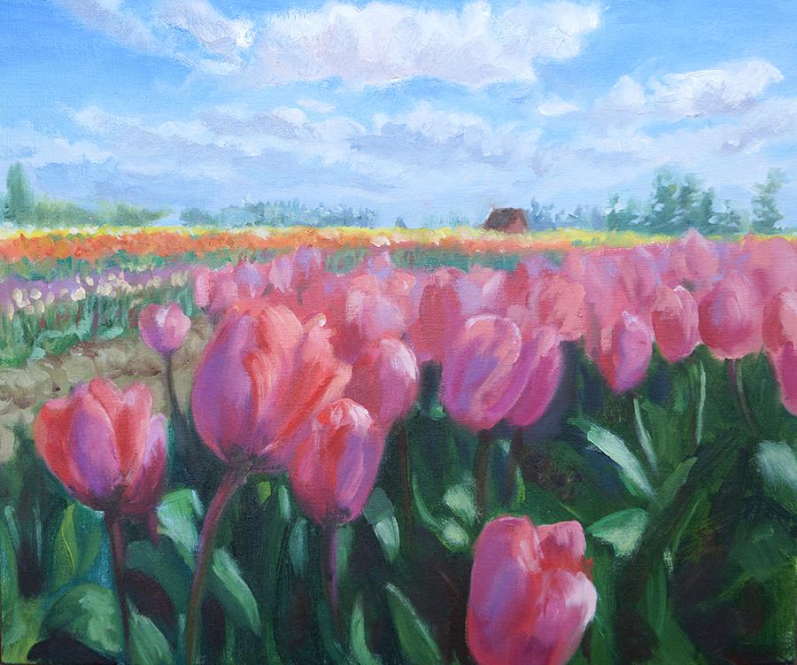 The Tulip Field