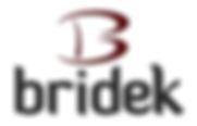 Bridek Logo - Colour.png