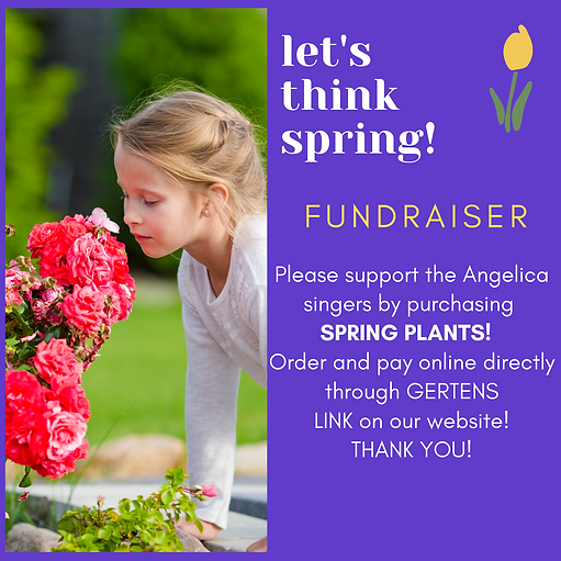 SPRING fundraiser(1).png