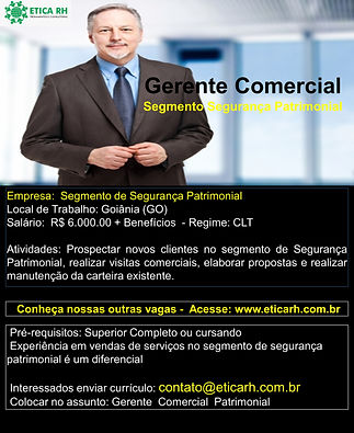 Gerente Comercial Nacional.jpg