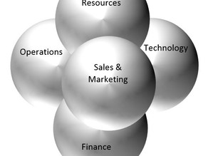 Organization versus Innovation