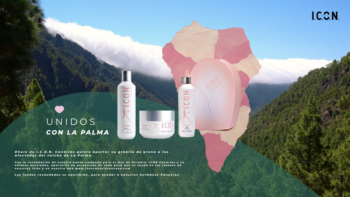 LA PALMA CURE WEB.PNG