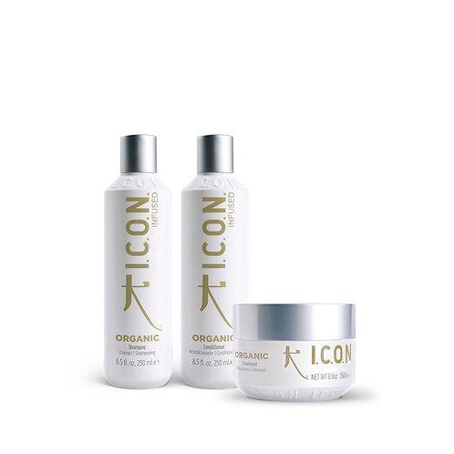 Pack Shampoo 250 ml. + Conditioner 250 ml. + Treatment 250g.