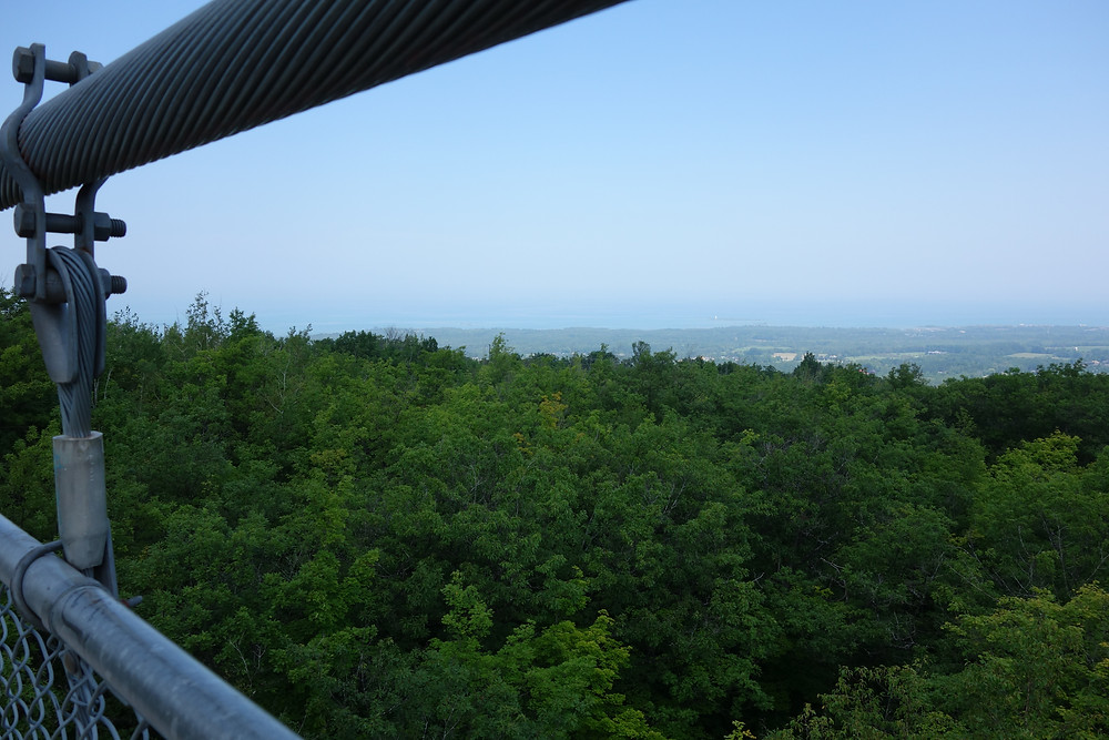 View of Blue Mountain area from the suspension bridge