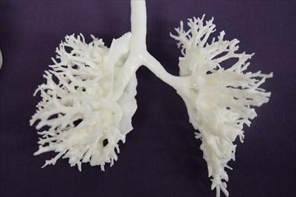 第8回日本心臓血管3次元モデル研究会セミナー