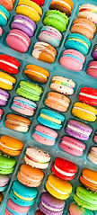 Jac and Jill's Macarons-July2020-2.jpg
