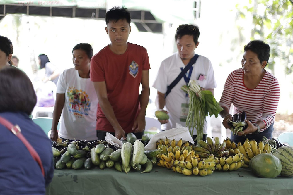 Hinahanda ng mga taga Kauswagan ang mga prutas at gulay sa Farm Field Day na regular na ginagawa sa kanilang model organic farm. (Photo: J.Umaran/HRS Media)