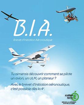 BIA nantes1.jpg