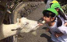 AES Preschool・福岡プリスクール・保育園・子供の英会話・幼児英語・北九州