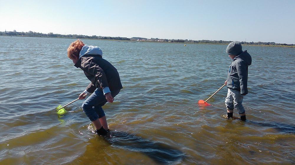 pêche à pied et aquarium de mer