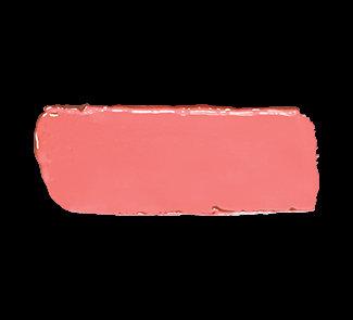 Artist Rouge LipstickBeige Coral C302