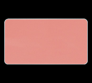 Artist Face Color 5g Pastel Coral S300