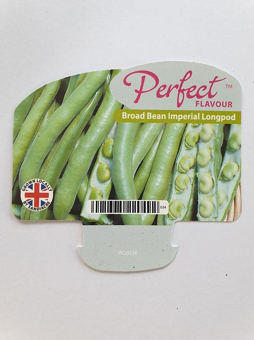 Veg Broad Bean Imperial Longpod