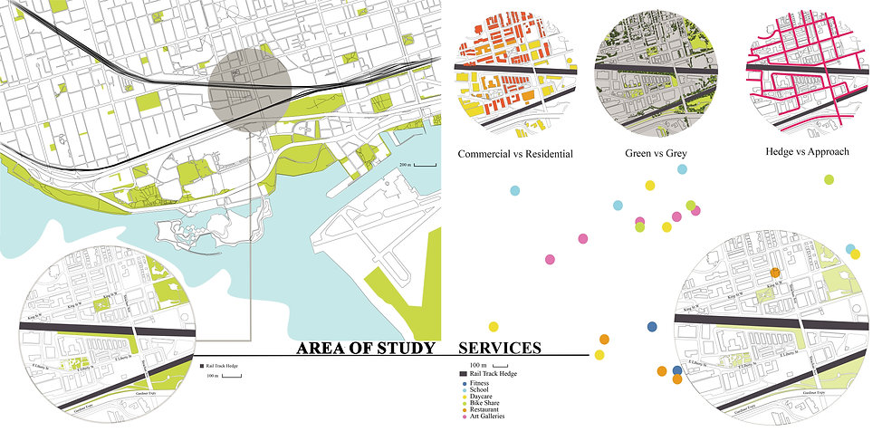 Area of Study and Services