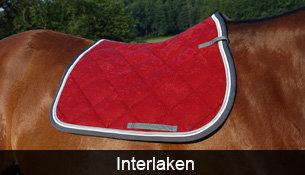 Schabracke Interlaken