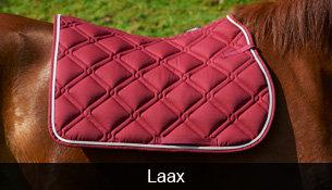 Schabracke Laax