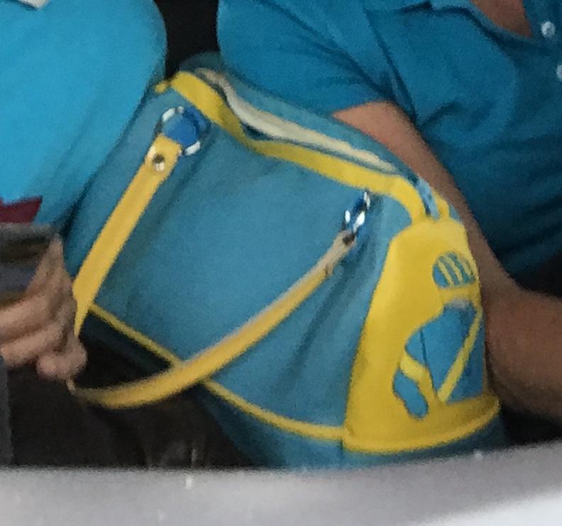 Handtasche in Rennfarben