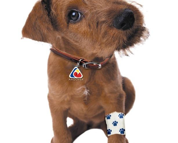 Powerflex Bandagen Hund.jpg