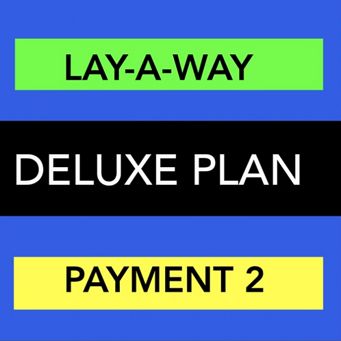 DELUXE WEBSITE LAY-A-WAY PAYMENT 2