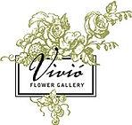 vivio_logo_edited.jpg