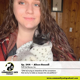 Image of woman holding black and white kitten, with description for Community Cat Podcast episode 344 Alisse Russell