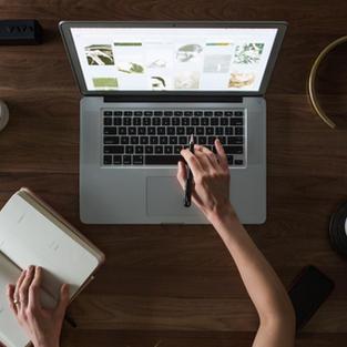 Delivering an Online Workshop