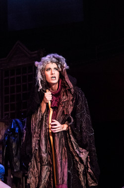 Witch - Into the Woods