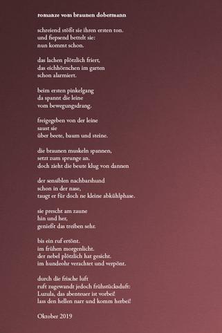 romanze vom braunen dobermann