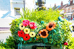 Sat 2nd to Sat 16th May: Yarn Bombing