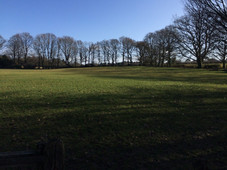 Large fields alongside the Reading Room building