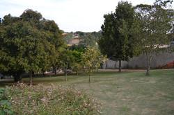 Solário II