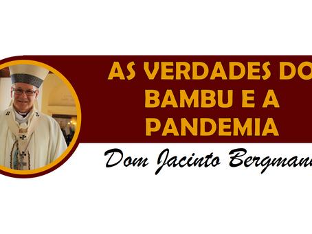AS VERDADES DO BAMBU E A PANDEMIA