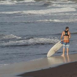 DolfinPack - Surfing