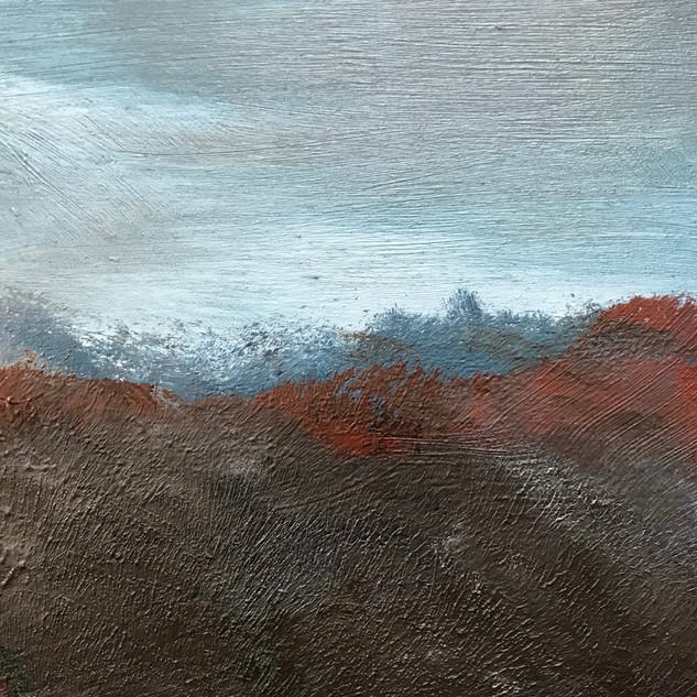 Brown Field Gray Sky