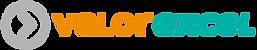 VEx Banner Logo.png