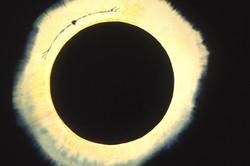 Eagle eclipse