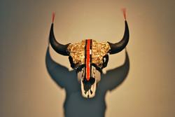 Buffalo Skull 1