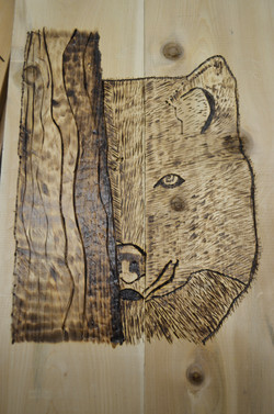 Woodburning 11